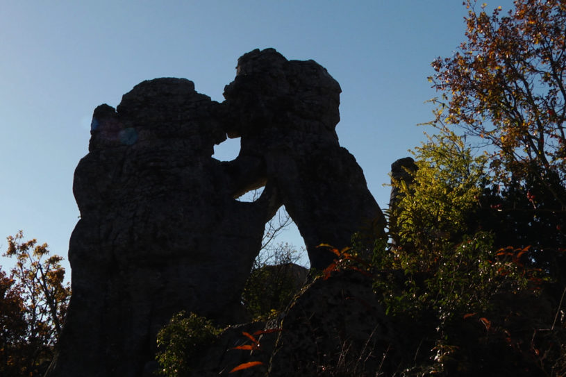 L'Ours et le Lion